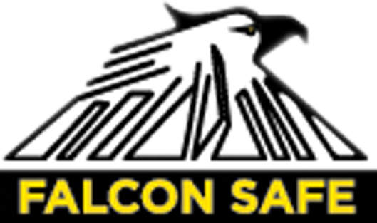 logo-falcon-safe